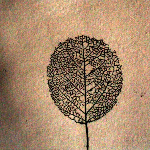 graphic leaf